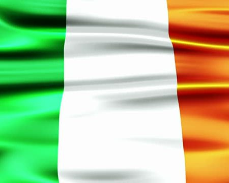 Irish Citizens and the Immigration and Social Security Co-ordination (EU Withdrawal) Bill